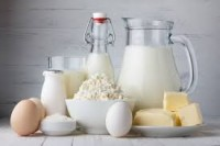 Denmark Dairy Products Market