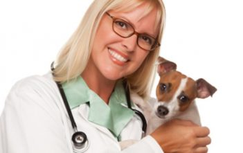 Pet Insurance In The Uk market