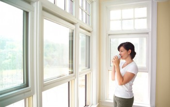 India UPVC Doors and Windows Market Future