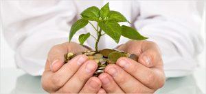 Wealth-Management (2)