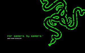 Razer_green_logo_hd_wallpaper_1920x1200_2