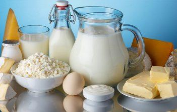 Africa Dairy Market