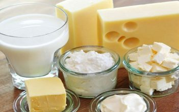 South Africa Dairy Product Market