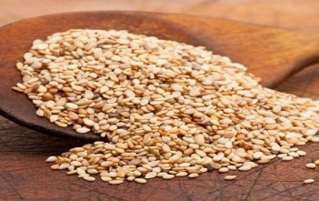 India Seed Coating Market