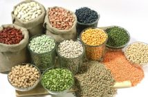 Philippines Seed Industry,