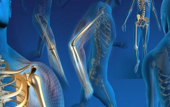 Orthopedic Replacement Market