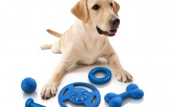 Global Pet Toys Industry price Analysis,