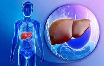 Liver Cancer Therapeutics Market