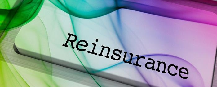 Reinsurance in the Netherlands Market