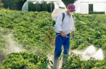 Global pesticides industry analysis