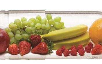 North America Vegetable Capsule Market Future Outlook