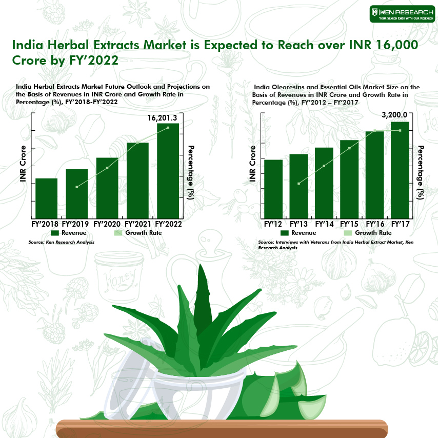 India Herbal Extracts Market