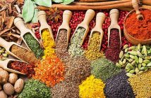 Philippines Food Ingredients Market Research