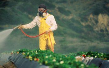 Thailand Crop Protection Market