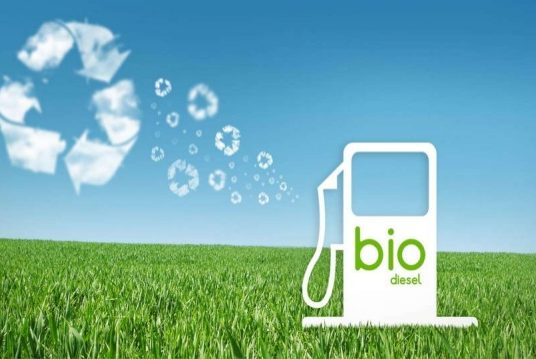 Global Pure Biodiesel Market Research Report: Ken Research