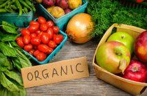 Organic Food Production Volume