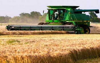 Grain Farming Global Market