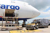 Cargo Handling, Warehousing and Travel Agencies