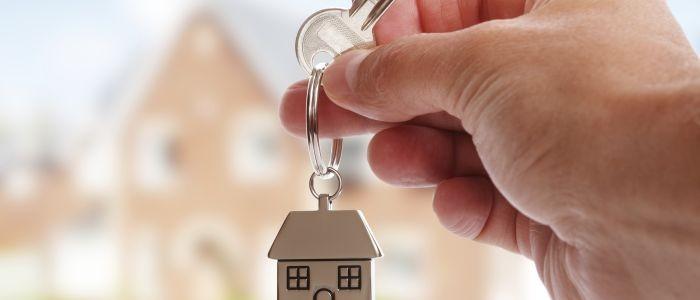 Real Estate Activities Market