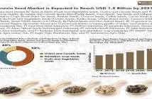 Indonesia Seed Market-01