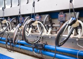 Low Cost and Long Life Cluster Detachers to Drive Asian Dairy Processing Equipment: Ken Research