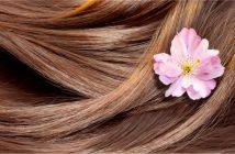 Malaysia Haircare Market Research Report
