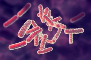 Global Pseudomonas Infections Market