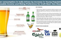 INDIA BEER MARKET SEGMENTATION