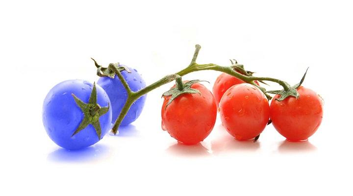 Genetic Engineering Market