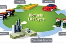 Global Biofuel and Biodiesel Market