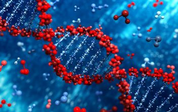 Global Polymerase Chain Reaction Market