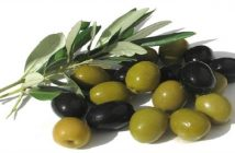 Global Olive Leaf Extract Market