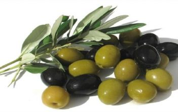 Global Olive Leaf Extract Market
