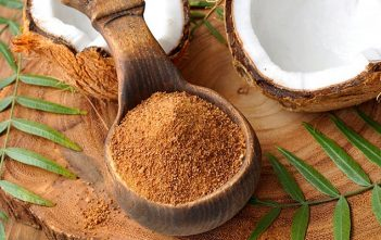 Global Organic Coconut Sugar