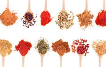 Global Spices & Seasonings Market