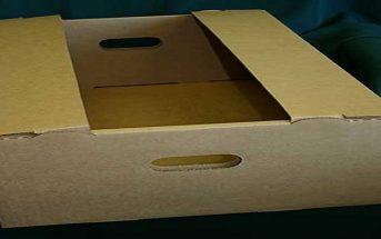Global Corrugated Packaging Market