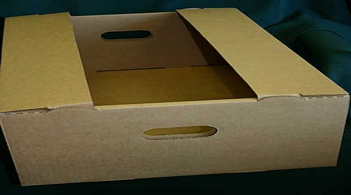 Global Corrugated Packaging Market