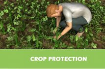 Global Crop Protection Market