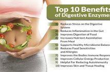 Global Digestive Enzyme Market