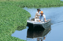 Global Aquatic Herbicides market