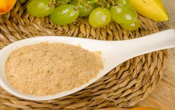 Global Yeast Market
