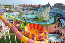 Global Amusements Market Report 2019