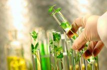 Biotechnology Separation Systems