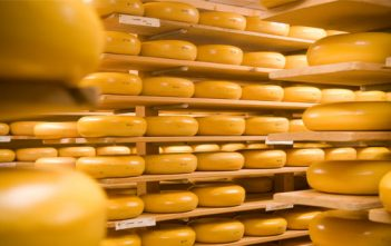 Global Cheese Manufacturing Market