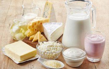 Global Dairy Food Market