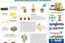Brazil seed Market