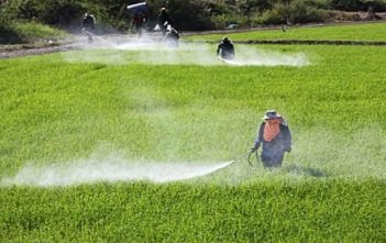 Global Crop Protection Market Research Report