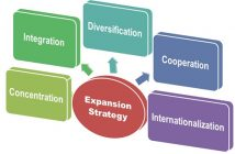 Growth and Expansion Strategy