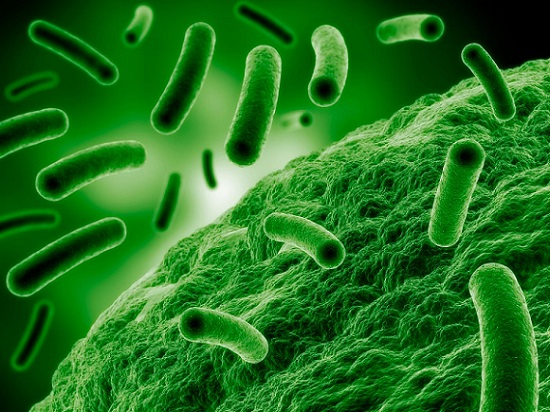 Global Antimicrobial Additives Market