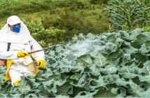 Crop Protection Chemicals Market Revenue